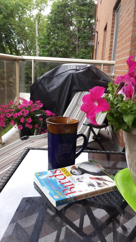 Summer Life on Balcony