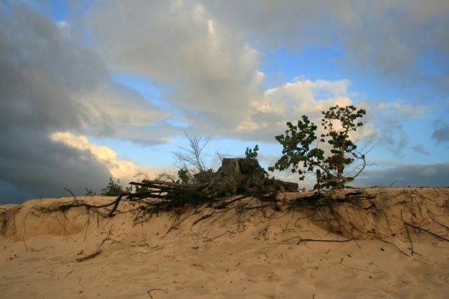 After the Hurricane, Cuba